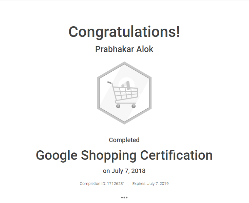 Google Shopping Certification