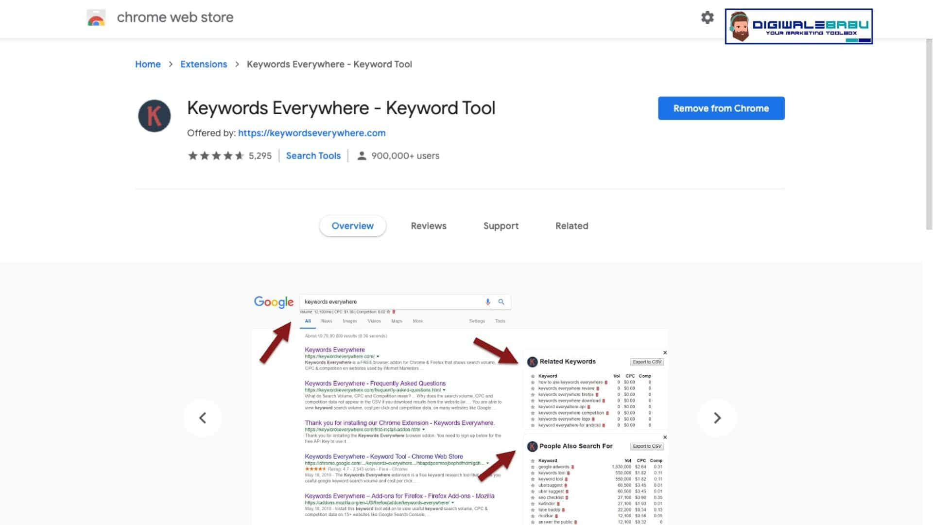 Keyword Everywhere Chrome Extension